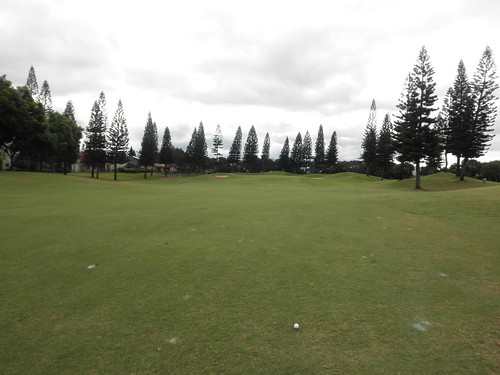 WAIKELE COUNTRY CLUB 036