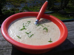 Cream of White Wild Mushroom Soup