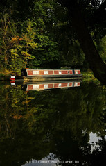 Reflections of The Morning Dreams (MICHAEL J ROFF PHOTOGRAPHY) Tags: england surrey guildford augustmorning