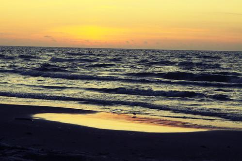 sunrise day 1 rm
