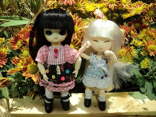 Miki & Mii