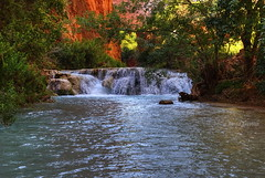 Beauty of Havasu Creek (Chief Bwana) Tags: grandcanyon az 100views 200views travertine supai havasucreek bluegreenwater psa104 chiefbwana hasasupai