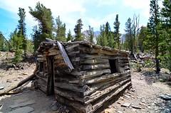 Miner's Cabin Photo