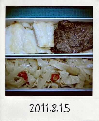 20110815_Photo Diet_1