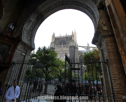 glimpse seville gothic cathedral