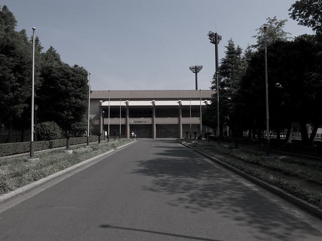 川口市民プール