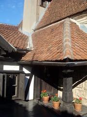 Bran Castle, Romania (Albina Carpatina) Tags: dracula romania castel bran turism flori vechi lemn muscata ghiveci