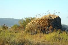 Nuraghe Toscono (cristianocani) Tags: sardegna italia archeology nuraghe archeologia megalitismo borore civiltnuragica marghine
