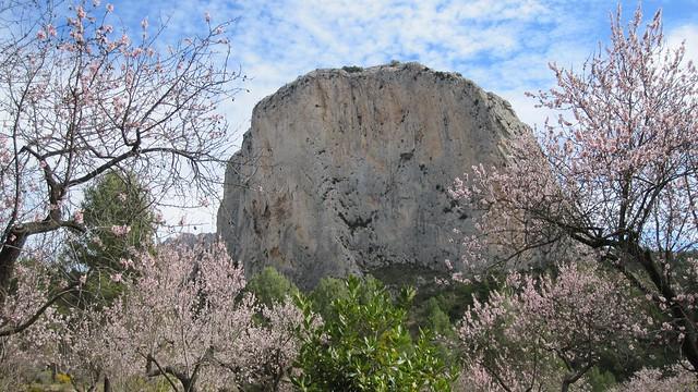 Guhyaloka rocks 4