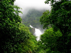 Waterfalls, Streams, Clouds, Greenery... (Jayfotographia) Tags: life trees india mist tourism nature water fog clouds trekking goa waterfalls greenery karnataka westernghats sighseeing dudhsagarwaterfalls doodhsagarwaterfalls mygearandme braganzaghats