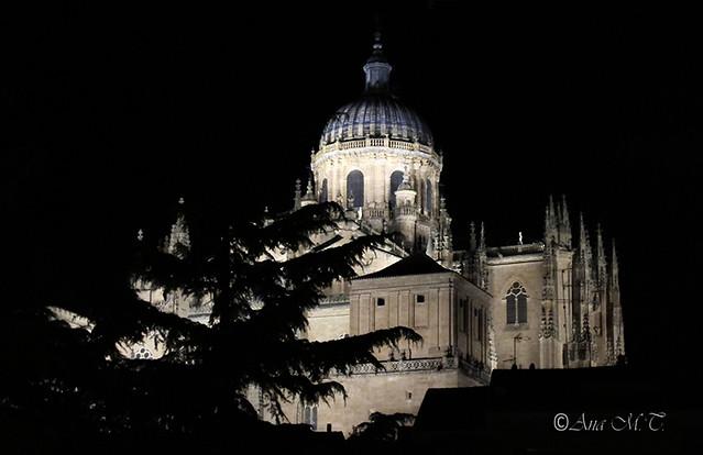 IMG_0583_Salamanca