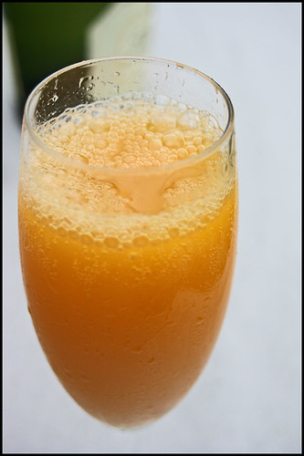 6082193388 c099d434e9 Bellini cocktail