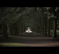 The way through the woods - Rudyard Kipling (martinfowlie) Tags: wood trees silhouette person suffolk avenue nationaltrust rudyardkipling ickworthhall thewaythroughthewoods