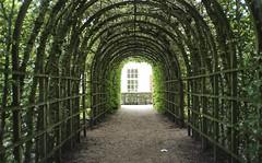 green gate (Jos Mecklenfeld) Tags: leica green film 35mm gate kodak thenetherlands groningen stad prinsentuin colorplus afc1 kodakcolorplus epsonv500 leicaafc1
