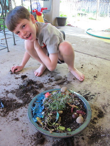 Making Dino Gardens #7