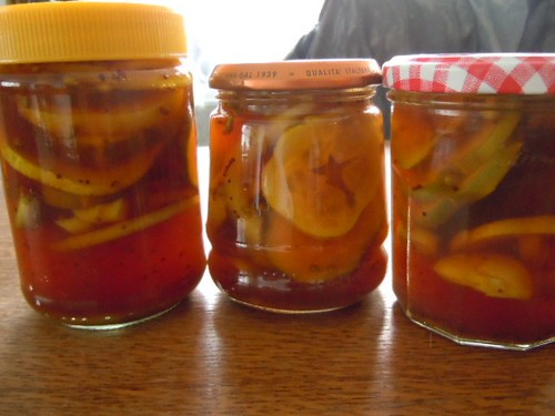 Refrigerator pickles made with bush and lemon cucumbers