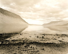 Arnarfjörður / Morning's Innocence (Spitting Doc) Tags: new rollei silver print island iceland seagull lith oriental lithprint se5 westfjords plaubel makina w67 rpx400 rpxd 3040100005refreshed 3schlafplatz innocencehasashortlifetime