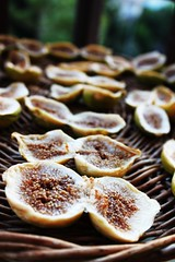 If God had intended us to follow recipes, He wouldn't have given us grandmothers. ~Linda Henley (♪ fotodisignorina ♪ Felicia Violi PHOTOGRAPHY) Tags: italy food dof fig bokeh south calabria driedfigs bovamarina canoneos500d