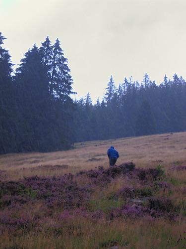 Chris Hiking Rain by Danalynn C