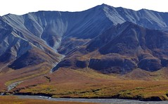 Autumn in Denali (blmiers2) Tags: travel autumn mountain mountains fall nature alaska landscape nikon denali d3100 blm18 blmiers2