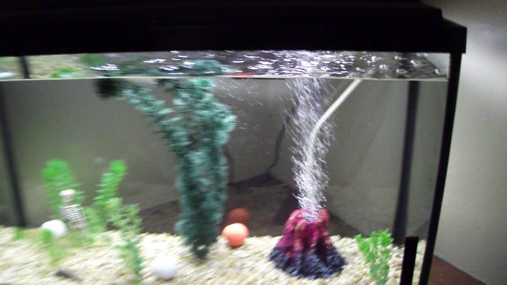 Buy Fish Tank Heater Buy Fish Aluminum Tube Heater