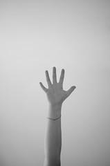 Hand (EnKajsa) Tags: hand arm sweden five eriksson kajsa