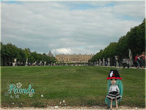 Prímula en Versalles