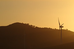Mt Misery (blachswan) Tags: sunset australia victoria windtowers mtmisery waubra waubrawindfarm