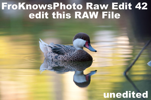 Edit this RAW File Week 42