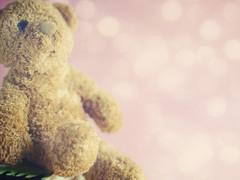 Through a lifetime (cazadordesueos) Tags: life bear book sitting y teddy sweet rosa toque full delicate dulce delicado evoking soandodespierto llenodevida bokehlicioso elositodepeluche sentadoenellibro adivinacuales evocandoalavida momentosconesencia
