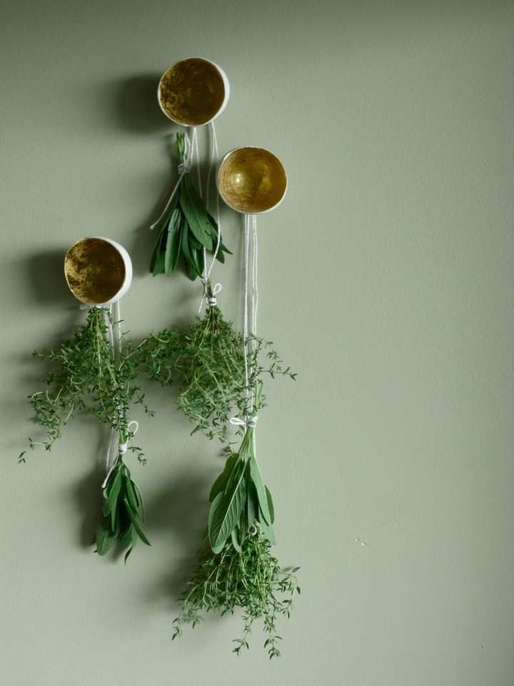 drying herbs sage thyme 008