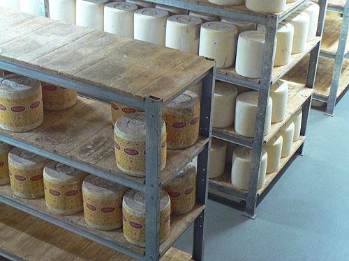 fromages de Laguiole.jpg