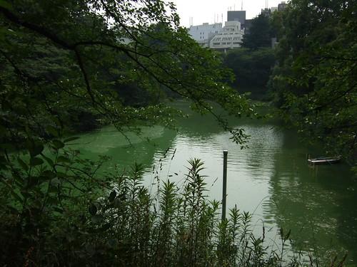 0226 - 09.07.2007 - Camino Palacio Imperial
