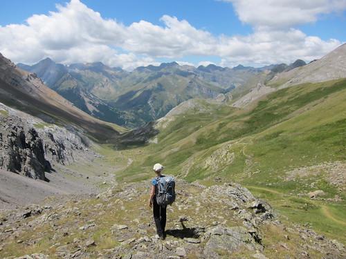 Danalynn Pyrenees By Danalynn C