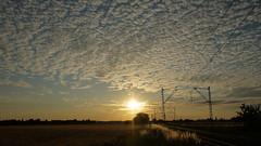 Sunset (Artrian) Tags: sunset cloud sun field clouds train germany lumix railway wideangle panasonic 14mm rheinneckar edingenneckarhausen gf2 edingen