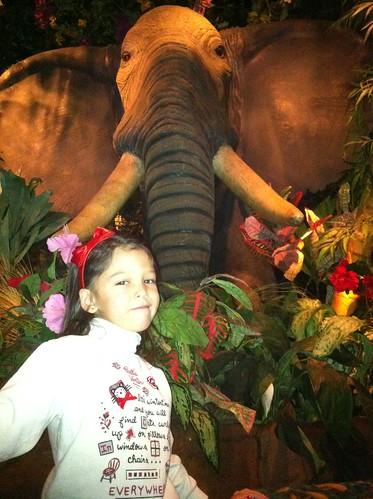 elephant Audrey