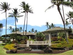 Maui Chiaki 354
