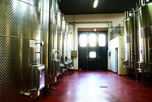 Wine cellar at Azienda Agricola Il Ciliegio in Tuscany