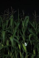 mission to maize (simon zalto) Tags: light green mobile night dark painting corn samsung ufo stamp rocket stencile