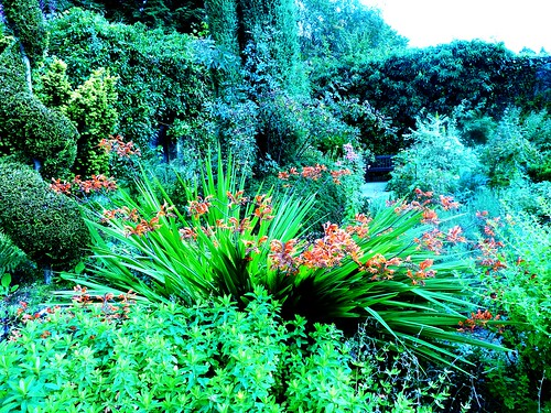 Colourful Garden at Greenbank
