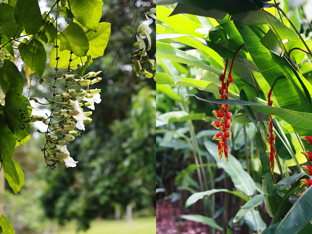 Botanicals Garden Hanging Flowers