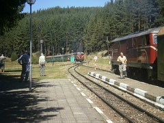 Septemvri - Dobrinishte Narrow gauge railway (spasimir.v.pilev) Tags: railway bulgaria gauge narow spasimir
