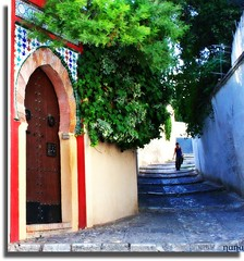 Solamente t... (nanettesol) Tags: street door woman calle puerta alone chica granada carmen escalones albaycin