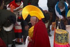 Show a huge Tangka (woOoly) Tags: china chinese tibet amdo tibetan  gansu gannan zhongguo anduo  tibetculture tibetanbuddhist tangka tibetannewyear tibetanculture        southofgansu  tibetregion  templegerdi gannantibetarea templelangmu festivaloftibetannewyear shafo tibetanbuddhistactivities amdotibetregion