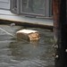 Piece of styrofoam came loose from one of the docks.