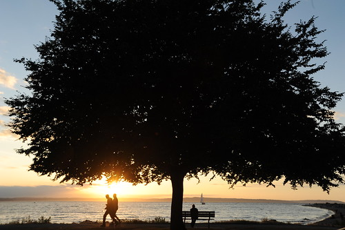 When we're together it means so much ... tree, sea, bench, sailboat, people, Golden Gardens Park, Seattle, Washington, USA by Wonderlane