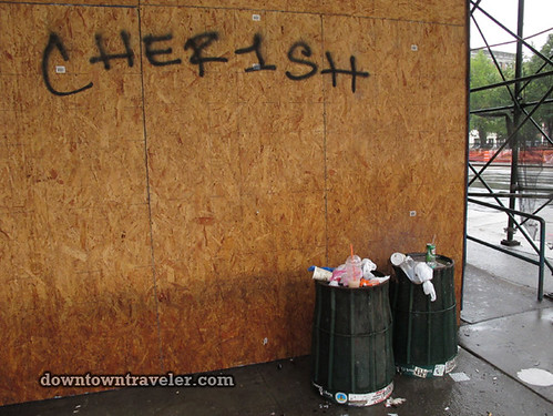 Aftermath of Hurricane Irene in NYC_Trash
