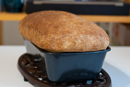 basic sandwich bread-39