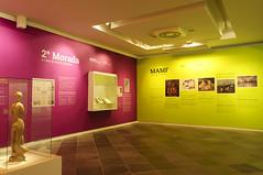 MASC (Moyses Lavagnoli) Tags: santa verde azul cores de museu arte florianpolis vermelho amarelo catarina tempo paredes espao histria roxo tintas exposio morada masc mamf
