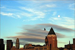 New York Manhattan (DamDong) Tags: new york travel ferry manhattan olympus 새 뉴욕 달 c4040z 맨하탄 초저녁